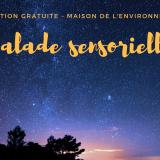 Maison de l'environnement - Balade sensorielle