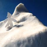 iceberg © David Metzner