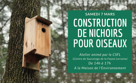 Maison de l'environnement 2020-03-07 - Nichoirs