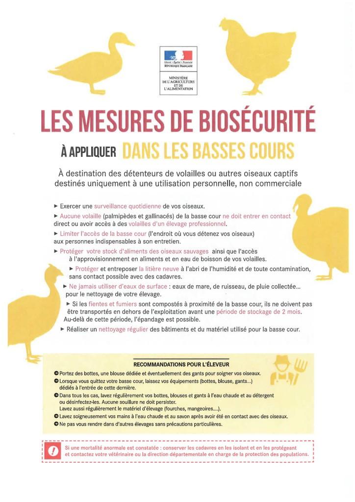 plaquetteInformativeInfluenzaAviaire